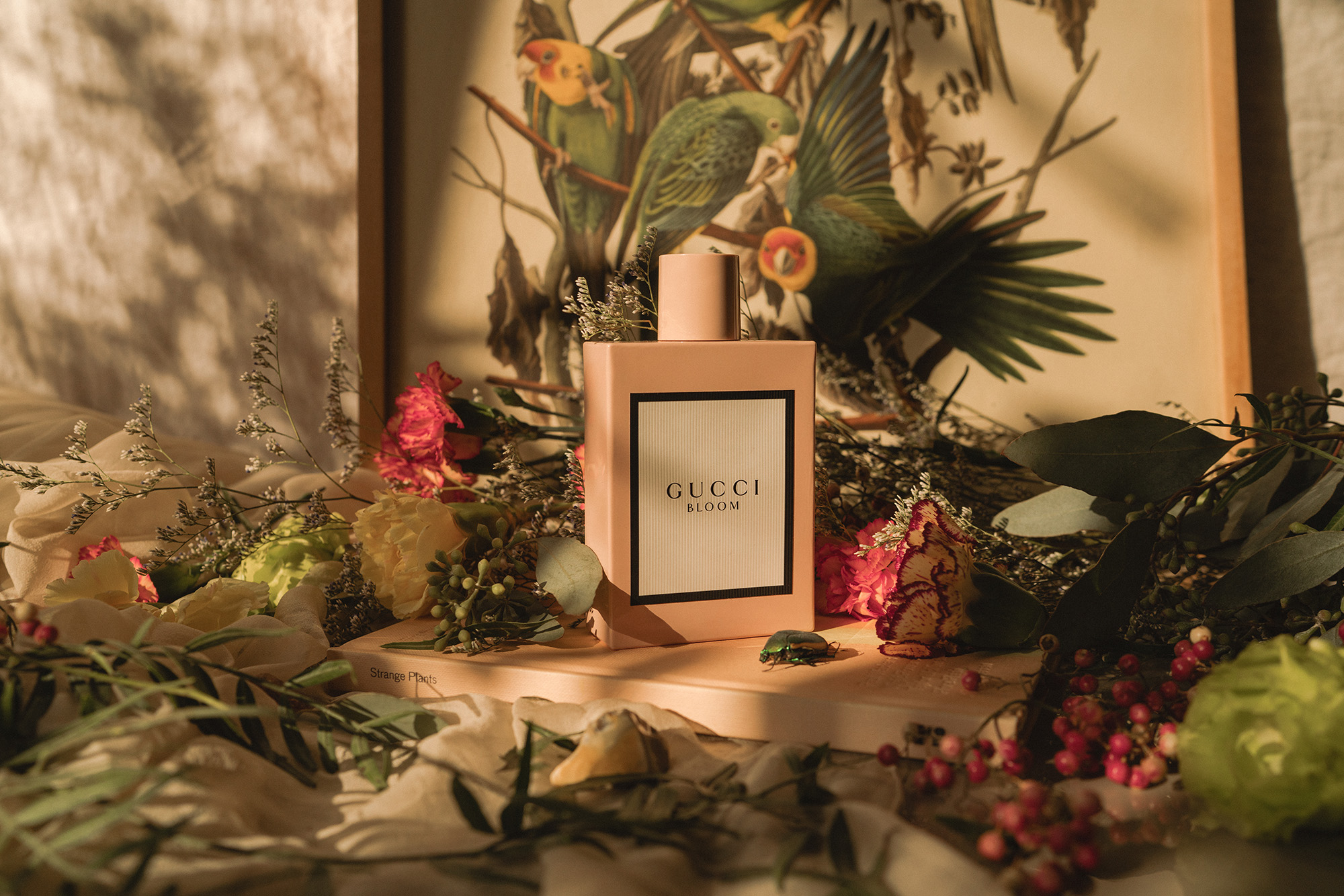 Gucci Bloom Just Another Fashion Blog By Lisa Dengler